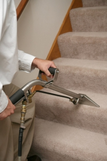 Ensuring That Your House Is Always Looking Its Best